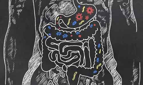 Probiotic drink may offer solution to antibiotic resistance