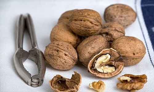 Regular walnut consumption may reduce risk of H. pylori-associated gastric cancer
