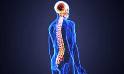 New injection technique may safely repair spinal cord injury