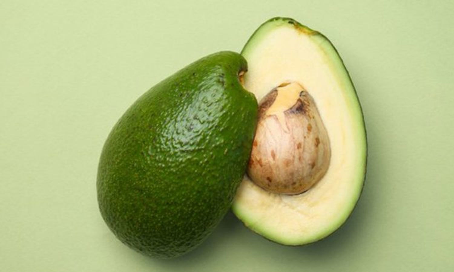 An Avacado a day may improve cognitive functions in obese adults