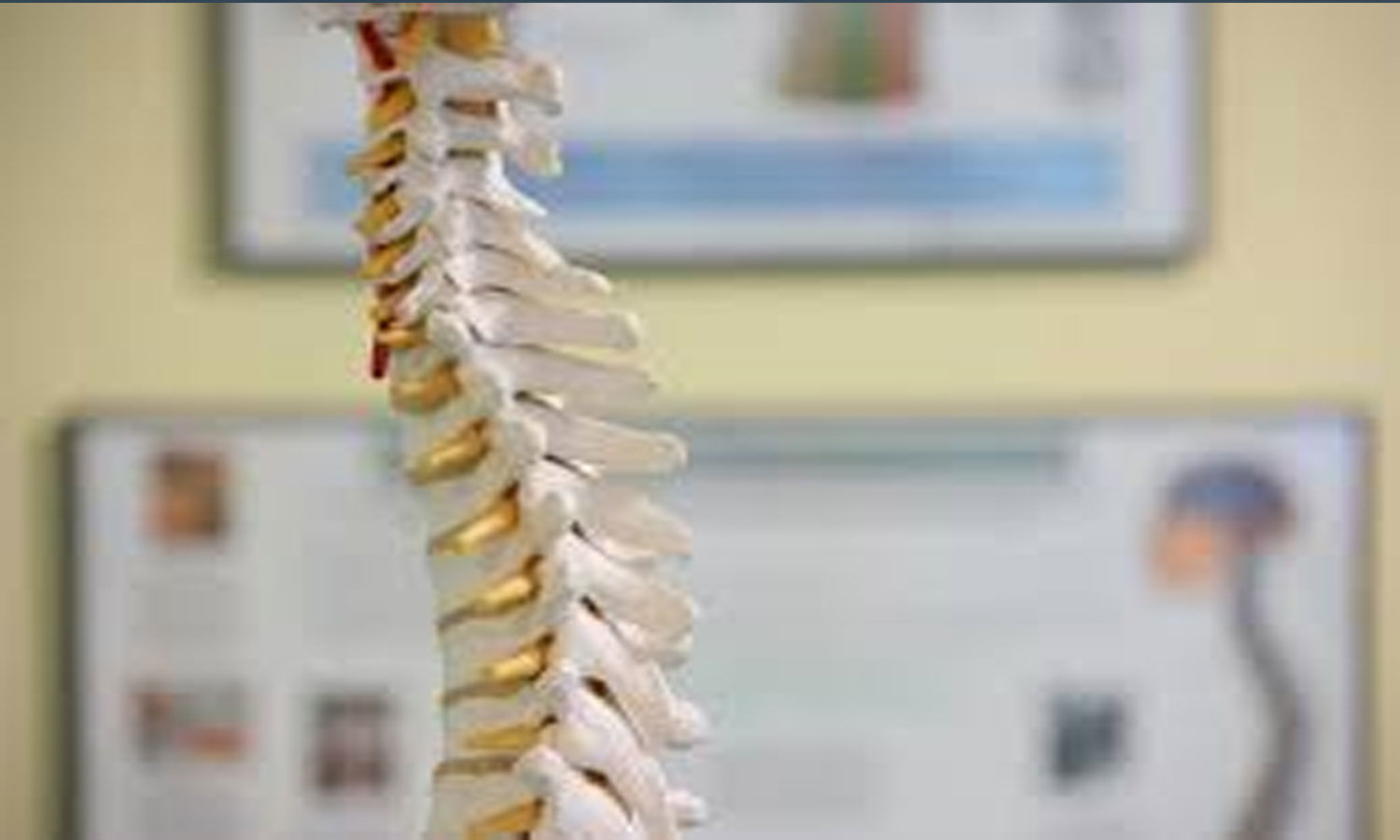 Researchers develop new two-step technique to heal herniated disc