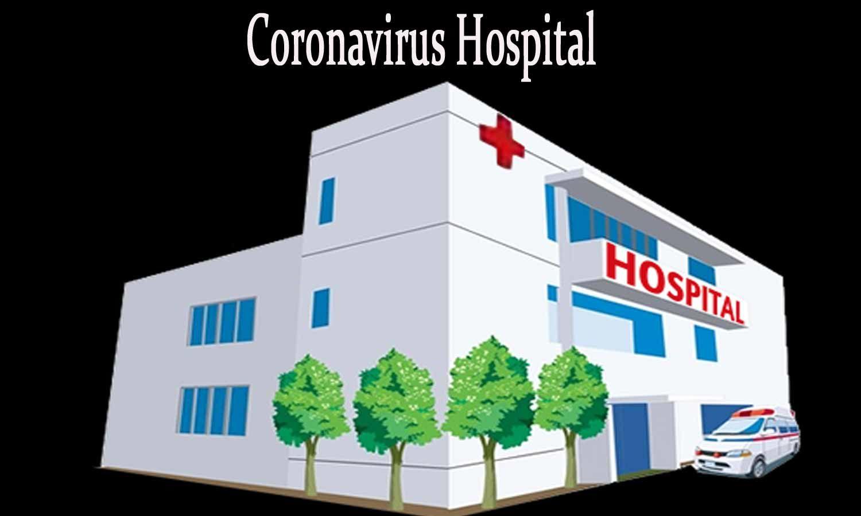 Two more COVID-dedicated hospitals in Delhi
