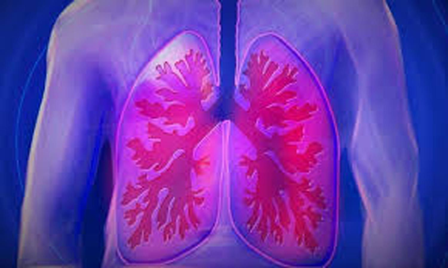 High uric acid protects elderly  women against lung function decline