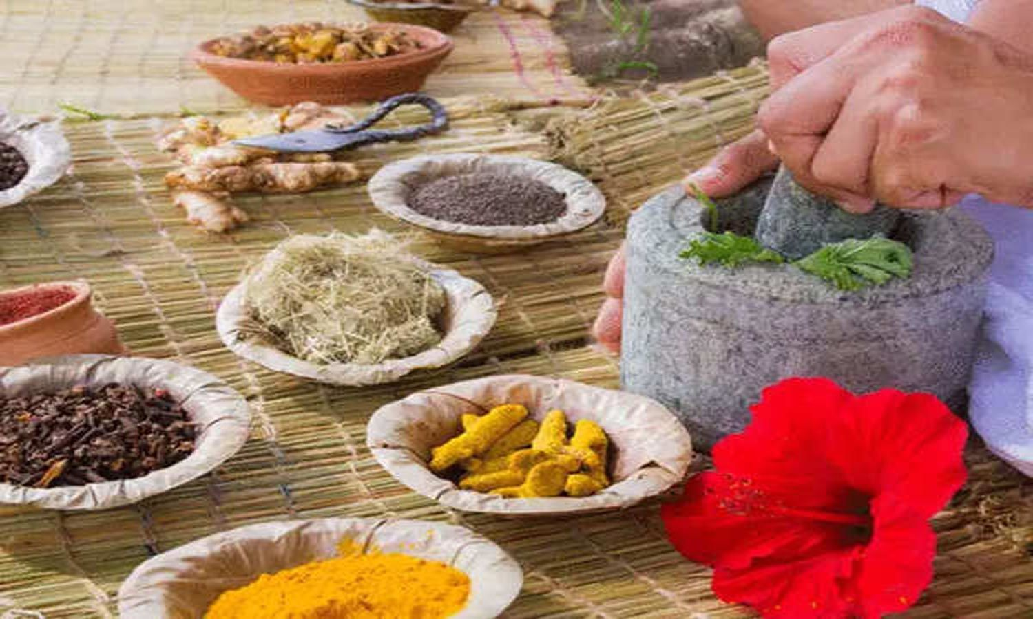 Ayurveda as add-on to standard care in COVID-19: Health, Ayush Minsitries begin research studies