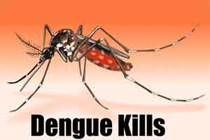 Sri Lanka records rise in dengue patients