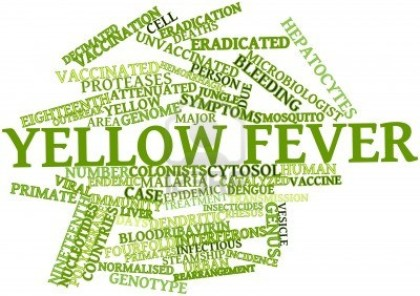 Online application for yellow fever vaccine: NDMC