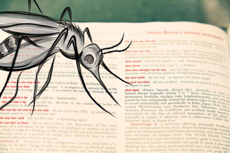 1,259 dengue cases reported in Delhi so far