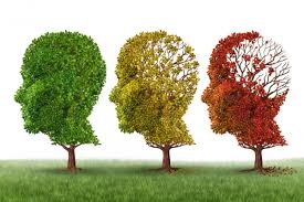 Alzheimer disease diagnosed over phone, finds Indian-origin researcher in US