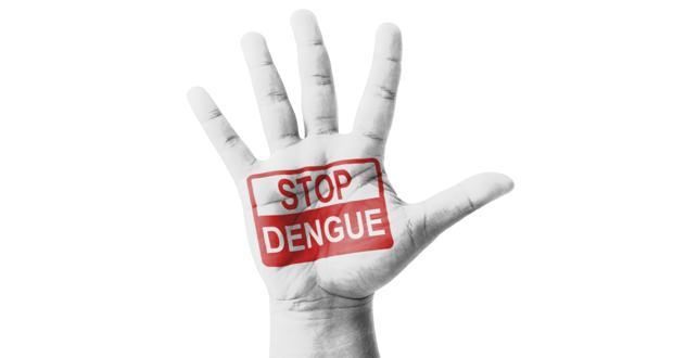 Prime Minister urges people to curb dengue