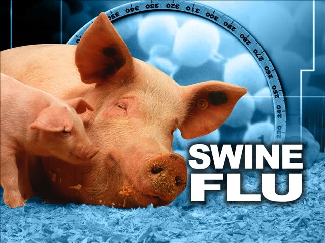 Swine flu claims 3 more lives, death toll touches 32 in Indore