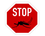 image source : http://ghponline.org/wp-content/uploads/2012/01/Stopmosquitoes.jpg