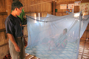 Malaria death rates plunge by 60%: joint WHO-UNICEF report