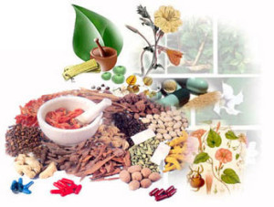 Chhattisgarh plans to start large scale production of herbal drugs