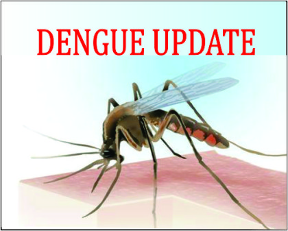 Delhi government buys 400 beds to accommodate dengue patients