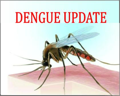 Delhi: Dengue cases rise to 2,774