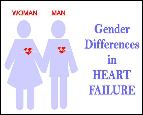 Male and female hearts dont grow old the same way: John Hopkins Study