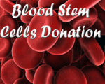 blood stem cells donation copy