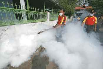 Fogging Not Harmful, an Effective Method to Dengue: Government