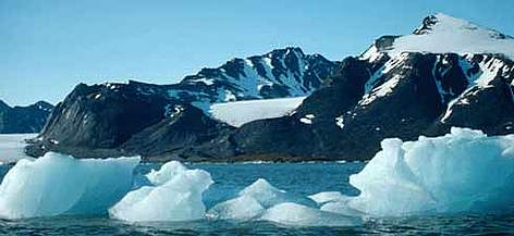 Micro organisms in Polar Regions may prove vital for cancer treatment