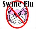 swine flu (2)
