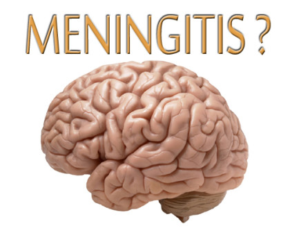 Indian vaccine for meningitis hailed in Africa