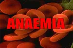 MP to launch Lalima Abhiyan to make state free from anaemia