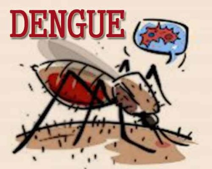 Odisha: Union Minister blames state govt for failing to control dengue outbreak