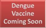 Dengue Vaccine
