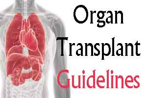 Gujarat: New guidelines for organ transplant proposed
