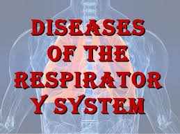 3D mapping makes respiratory diseases treatment easy