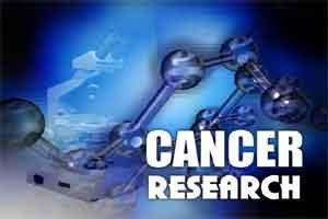 World's largest database for cancer drug discovery goes 3D