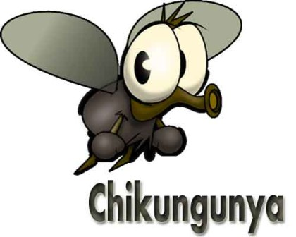 New Delhi: Chikungunya on the rise