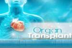 organ-transplant1