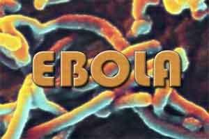 Unite, Fight against Ebola Ourtbreak: WHO chief urges DR Congo