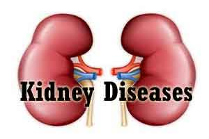 Kidney failures doubled in last 15 years in India: Health experts