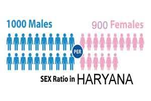 Sex ratio in Haryana improves; crosses 900 mark after a decade