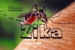 zika-