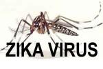 zika-virus2