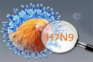 New human H7N9 case reported in China