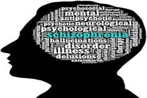 Schizophrenia symptoms may vary as per brain features