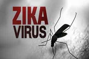 Zika virus may be transmitted through saliva, urine