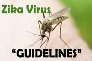 Health Ministry guidelines on Zika Virus Disease