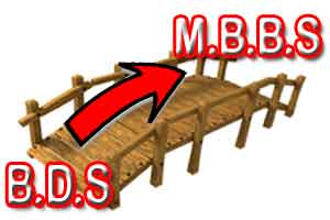 Bridge To Nowhere- IMA up against the idea of BDS-MBBS bridge course