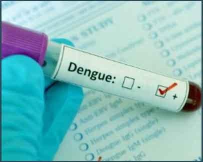 New Delhi: Govt puts a cap of Rs 600 for test for dengue