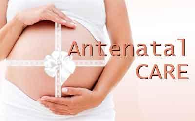 New antenatal care scheme for pregnant women launched