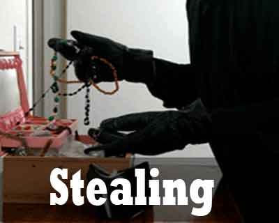 Theft during Doctors Conference: Rs 3 lakh jewellery stolen from Geneticist