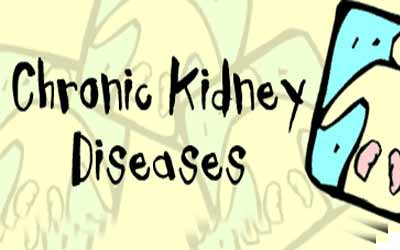Kidney Disease Deaths: Research institutes to study CKD in Uddanam says experts