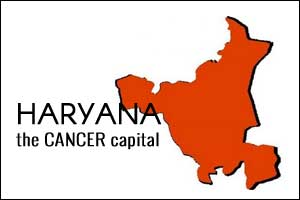 Haryana records 39 percent of cancer cases in India: Doctors