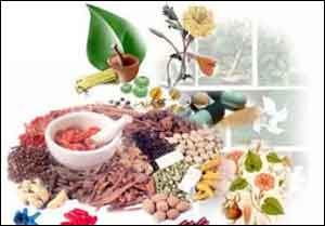 Ayush practitioners are welcome to UAE