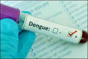 New Delhi: 9 dengue cases reported this year